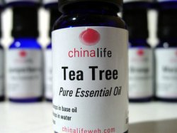 Tea Tree Essential Oil: Image